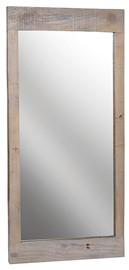 Saltash Mirror.jpg